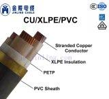 Проводник из бескислородной меди XLPE изоляцией ПВХ пламенно бронированные электрического кабеля питания