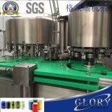Terminar las máquinas de proceso del zumo de fruta