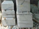 ホームデザインのための自然で白い石造りの大理石のタイル、カウンタートップおよび平板