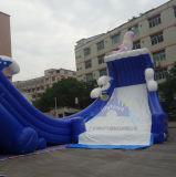 Riesiges aufblasbares wellenartig bewegendes Wasser-Plättchen