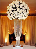بالجملة رفاهية يعلم بلورات يتزوّج جزء أساسيّ لأنّ زهرات و [كندلهولدر]