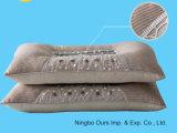 Magnete caldo di vendita & professione d'infermiera della casa del cuscino di salute riempita cassia