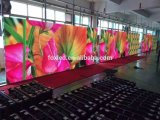 P4 HD LED Color interior Mostrar publicidad
