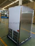 Mini frigorifero della barra del portello di vetro con il regolatore di Digitahi