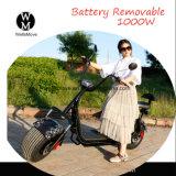 よい利益熱い販売法の最も新しいHarley Citycocoのスクーター60Vのリチウム電池