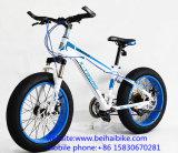 Bici barata de la nieve de la playa del carbón de China