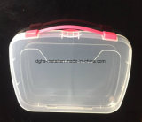 Hot Sale plastique de haute qualité conteneur de stockage Box (Hsyy703)