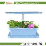 葉野菜のためのHydroponic成長するシステム
