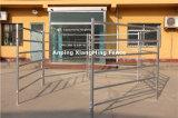 Panneau galvanisé populaire de yard de bétail de barres de l'acier 6 de l'Australie (XMM-CP007)