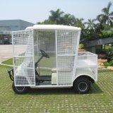 2 Seater weißes Elctric Aufnahmen-Kugel-Auto