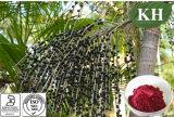 Полифенолы выдержки ягоды Acai 10% 20%; Anthocyanidins 5% 10%