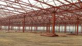 최고 급료 좋은 품질 강철 구조물 공장 또는 플랜트 작업장