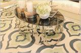 소녀 공급자는 서리로 덥은 명확한 유리제 커피용 탁자 상단을 제공한다