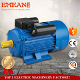 Электрический двигатель одиночной фазы электрического двигателя Rpm высокого вращающего момента 110V/220V электрического двигателя низкий