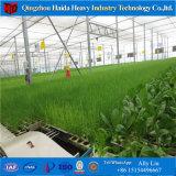 온실 야채를 위한 수경법 시스템