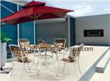 Jogo &Table ao ar livre da cadeira de Polywood da mobília/mobília do jardim/mobília do pátio/mobília do hotel (HS 3025C&HS6316DT)