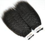 Indien-verworrenes gerades unverarbeitetes Jungfrau-Haar für Salon (Grad 9A)