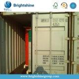 Vorm de Zonder koolstof van de douane