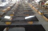 Fornitore nero di pietra naturale del granito per il controsoffitto
