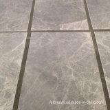 De grijze Zilveren Marmeren Tegel van de Muur Skyros