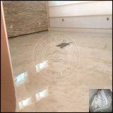De epoxy 3D Deklaag van de Vloer, de Metaal EpoxyLeverancier van China van het Pigment van de Vloer