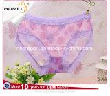El verano ventila la ropa interior transparente de las señoras del Lacework del acoplamiento del telar jacquar