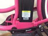 Bicyclettes électriques bon marché des prix 36V 250W de Chine
