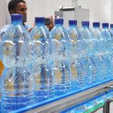 Ligne remplissante de l'eau automatique de bouteille d'animal familier