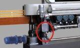 عظيم نوعية 11 محور دوران زجاجيّة [بفلينغ] آلة مع [ليفت فونكأيشن] لأنّ زجاج صغيرة ([كغإكس371سج])