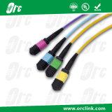8f/12f/24f MTP/MPO Patchcord 잠바 광섬유 연결관 Sm/Om3/Om4 PVC/LSZH/Ofnp