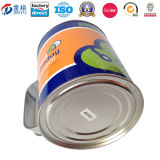 La Banca cinese dell'OEM Factory Round Coin con Handle Tin Can Jy-Wd-2015112801