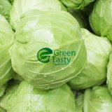 High Quality에 있는 최신 Sell Fresh Whole Cabbage