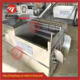 洗浄のサツマイモの皮機械にブラシをかける野菜ルート
