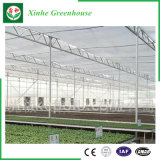 Landbouw/het Commerciële/van de Tuin Groene Huis van het PC- Blad met KoelSysteem