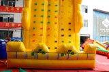 Mur gonflable géant d'escalade à vendre Chsp157