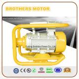 110V 220V одна фаза электрическая вибрация двигателя