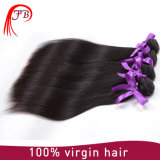 Da extensão Mongolian do cabelo do cabelo humano do Virgin cabelo 100% reto de seda