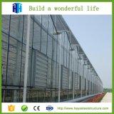 Prefab школьное здание подъема стальной структуры полуфабрикат высокое