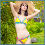 손으로 여름 여자의 형식 비키니 수영복 수영복