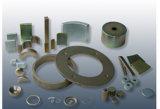 Motor de magneto de neodímio de segmento