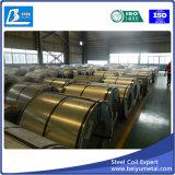 Горячая окунутая гальванизированная стальная катушка (Dx51D, PPGI, PPGL, SGCC, ASTM653)