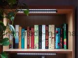 LED 지구 빛, 선반 빛, 상점 Windows를 위한 LED 지구 바 빛의 밑에 12V DC LED