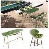 De nieuwe Reeks van de Eettafel van de Tuin van de Rotan van het Ontwerp Groene Rieten