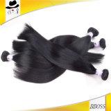 熱い販売のペルーのバージンの毛はもつれを束ねない