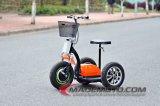 新製品インドの新しいカラー3車輪の電気スクーター