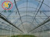 Serre van de Plastic Film van de Serre van de Serre van lage Kosten de Landbouw
