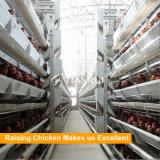 ナイジェリアの養鶏場のための自動熱い電流を通された金網の鶏の層のケージ