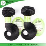Free Sample corps agréable de bonne qualité d'onde de 100 % d'extension de cheveux humains