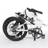 [20ينش] بالغ يطوي درّاجة كهربائيّة مع [لغ] بطارية