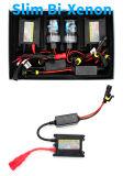Promoção de novos distribuidores HID de Xenônio HID 35W Kit HID Xenon H7 Kit HID 55W auto-peças para automóveis Comércio por grosso